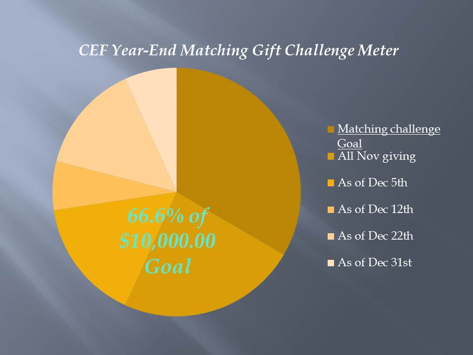 2014 year-end matched giving chart